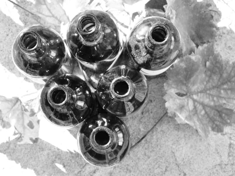 Wijngilde Mechelen Lidmaatschap